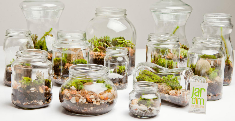 mini jardim de temperos : mini jardim de temperos:Encante-se com os mini jardins – Revista VerticalRevista Vertical